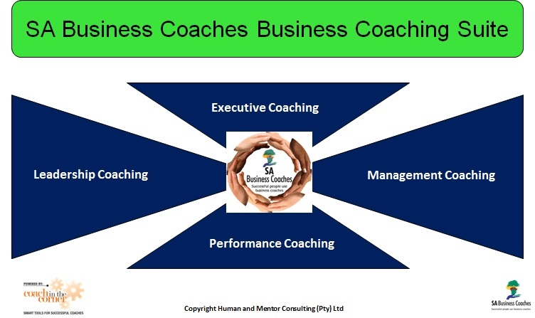 Image: SA Business Coaching Suite
